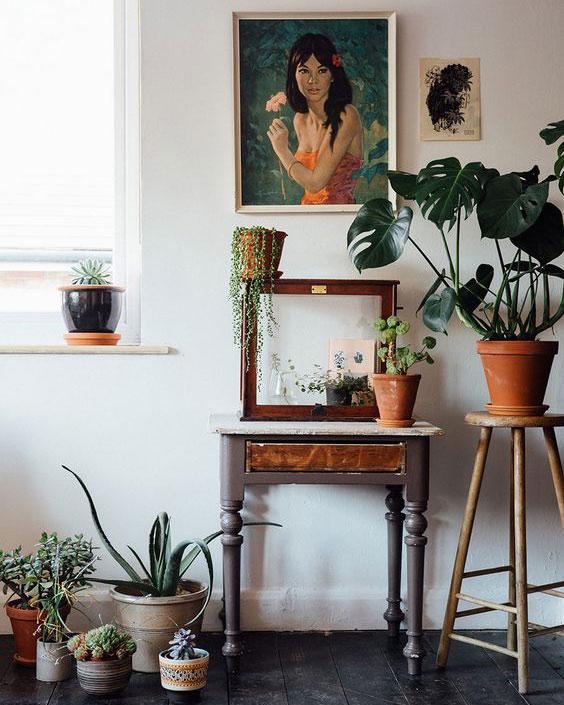 Hushållsplantor för hemdesign 2018